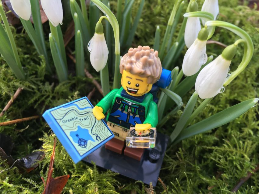 Lego MiniFig Navigator with snowdrops